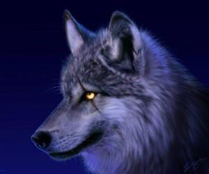 ioannis999's Profile Picture