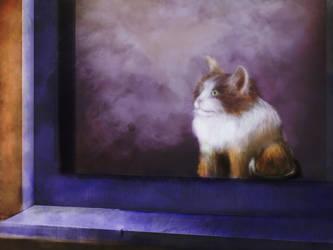 Cat in a window by darkness815