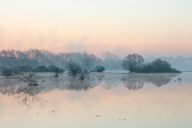 Spring flood by szorny-stock