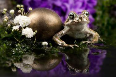 Frog prince by szorny-stock