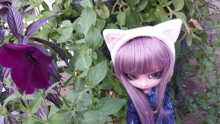White Cat ears for Dolls by Hop-is-my-Hero
