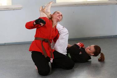 Judo-Armlock by bondjoev
