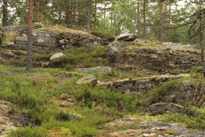 Rocky Forest by Seluias-stock