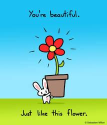 You're Beautiful by sebreg