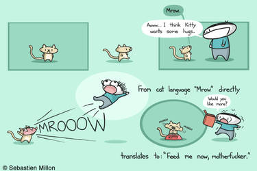 Mrow by sebreg