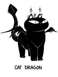 Cat Dragon by sebreg