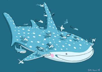Whale Shark by sebreg