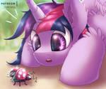 Ladybug [MLP Twilight] by Shad0w-Galaxy