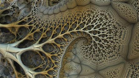 Branch With Swirl by HalTenny
