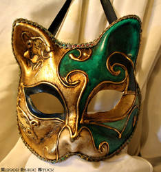 cat mask by mirrorimagestock