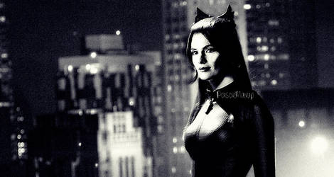 Stana Katic as Catwoman 5 by PoisonManip