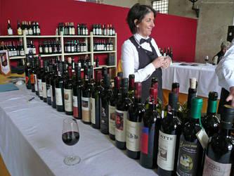 Lucca wine festival by bobswin
