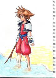 Sora on the Beach by Linka-Neo