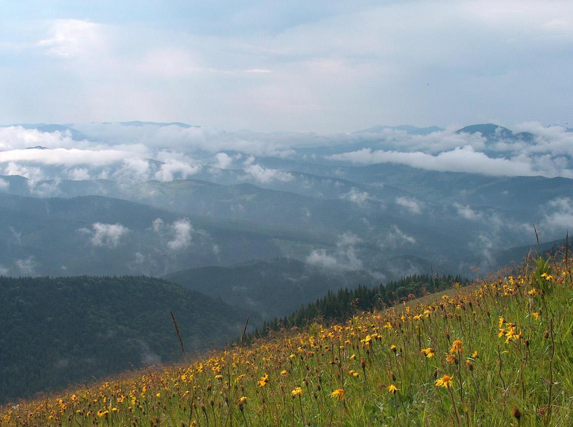 Ukraina - gdzies w gorach by tinte
