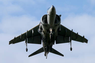 BAe Systems Harrier GR.9 by Daniel-Wales-Images