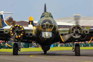 Sally B by Daniel-Wales-Images