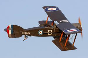 Bristol F.2b FIghter (Original) by Daniel-Wales-Images