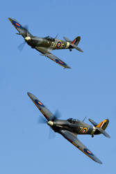 Spitfire and Sea Hurricane by Daniel-Wales-Images