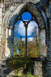 Netley Abbey by Daniel-Wales-Images