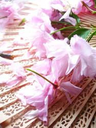 Pretty Pink by blackrainbows11