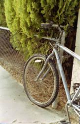 Golden Bike by Cadha13