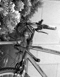 Old Bike by Cadha13