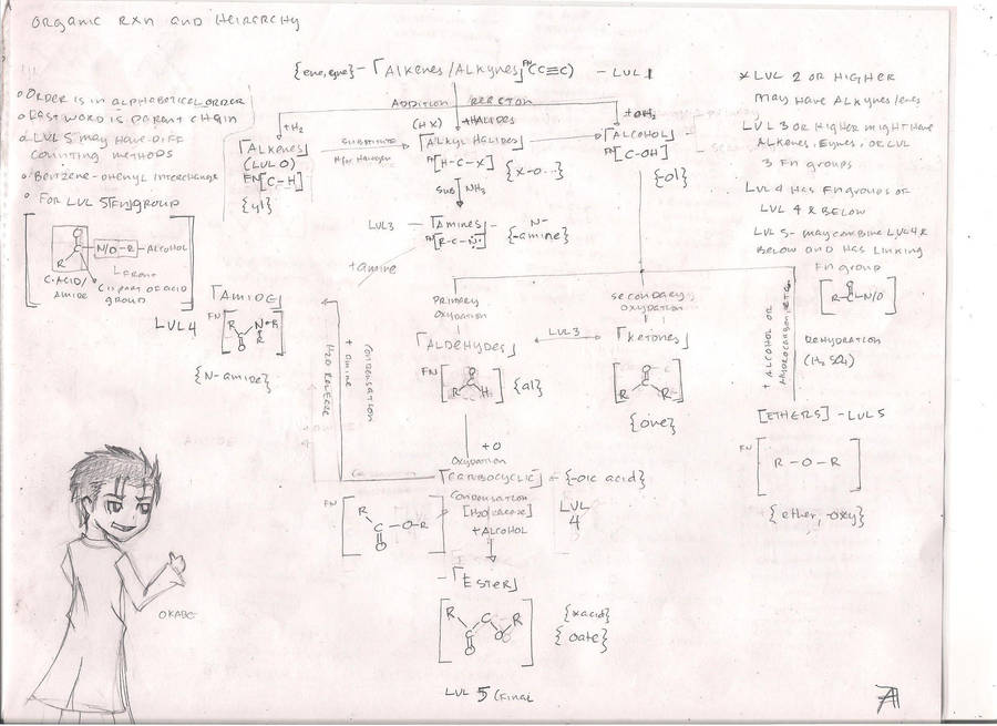Organic Chemistry Flow Chart By Gintongmartilyo On Deviantart