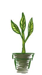 plant pot by kike3k1k