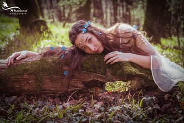 Elven Princess by LucreciaMortishia