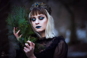 Lady of the cold forest by LucreciaMortishia