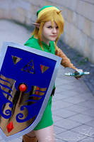 This is your end, Ganondorf   Link I by PirateHeartbeat