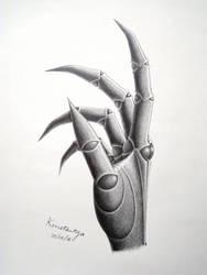 Konstanya's Folken Hand Study by Rad1986