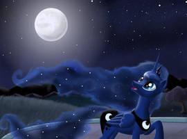 Moon Night by Sirzi