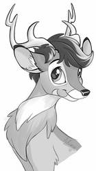 Aluxor deer by Sirzi