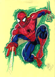 DTWTSPIDERMAN2 by mikecollins