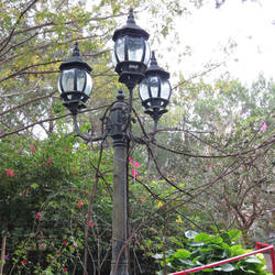 Lamp Post Vines by Barbaric-D