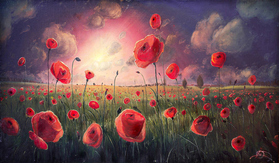 Poppies on a decline by hitforsa