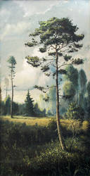 Summer pine by hitforsa
