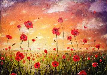 Poppies at sunset author's copy by hitforsa