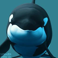 HELLO (new avatar) by namu-the-orca