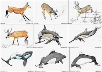 Little paintings #3 - Deer and water-deer by namu-the-orca