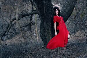 Wonder tree by DoraLovey
