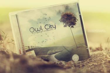 Owl City CD Cover by nelulanddsck