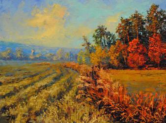 Autumn landscape. by herrerojulia