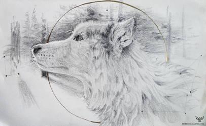 Study: Wolf by DM7