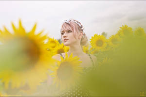 .: Helianthus :. by sideshowsito