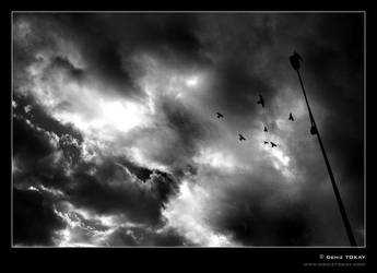Dark Sky by denizt