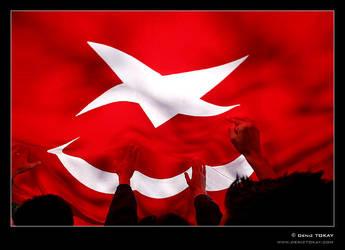 Cumhuriyet Mitingi by denizt