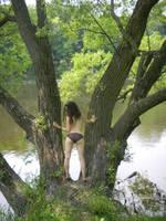 Tree Spirit by Alvyna