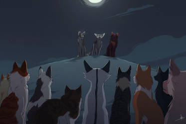 Secret gathering by OwlCoat